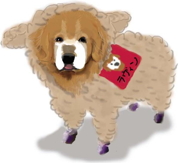 羊ちゃんラヴィン