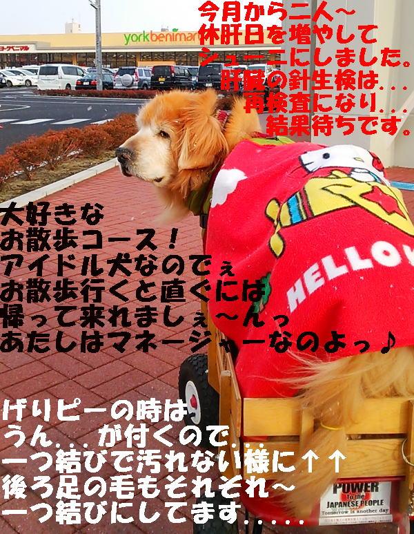 2015年1月10日(土)お散歩兼ねてお買い物ラヴィンとひろみ♪②