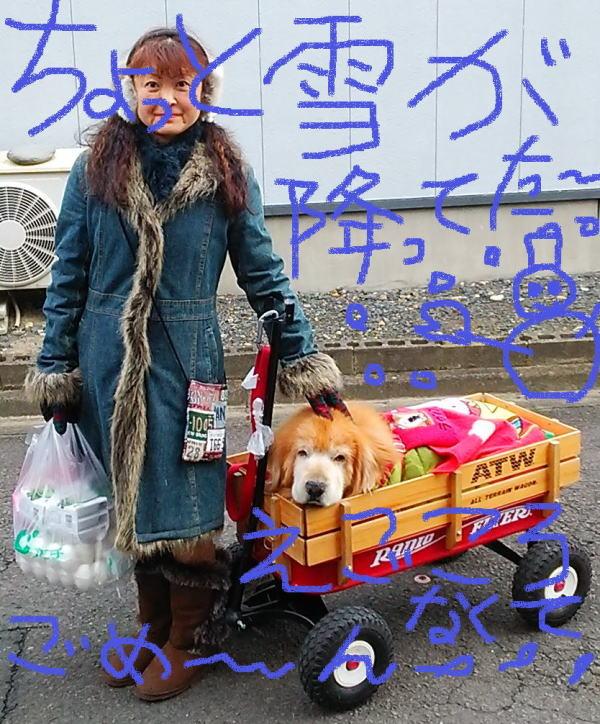 2015年1月10日(土)お散歩兼ねてお買い物ラヴィンとひろみ♪①