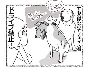 羊の国のラブラドール絵日記シニア!!「チェイスとドライブ」4