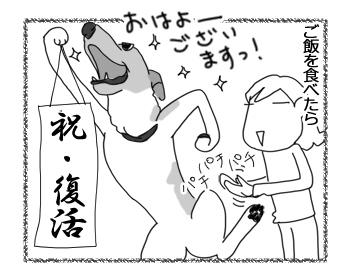 羊の国のラブラドール絵日記シニア!!「かみあわない午前中の男子」2