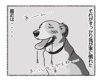 羊の国のラブラドール絵日記シニア!!「夢のバーガー」2
