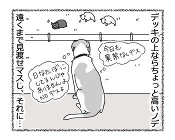 羊の国のラブラドール絵日記シニア!!「犬とアヒル」3