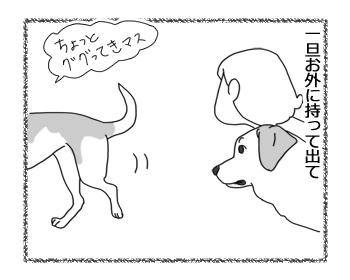 羊の国のラブラドール絵日記シニア!!「石橋を叩きすぎるチェイス」3