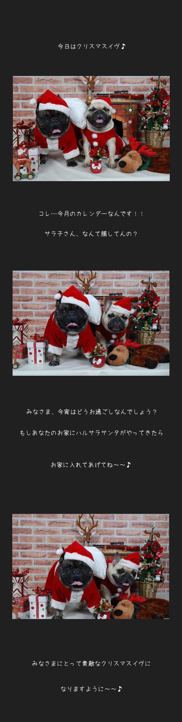ハルサラのクリスマスイヴ♪