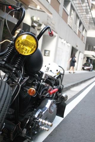 IMG_7403.jpg