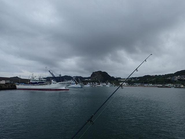 鴨川港で釣り (4)