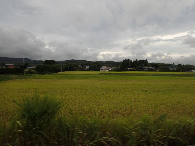 旅行帰り (2)