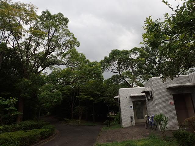 夏休みポタ (2)