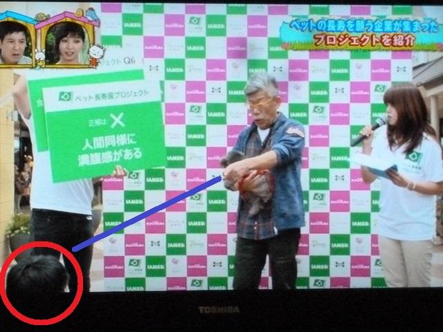 150524ポン太テレビ④