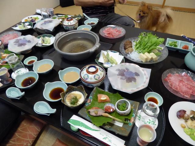150803ポン太夕食①