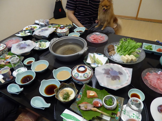150803ポン太夕食②