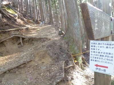 伊豆ヶ岳20150109