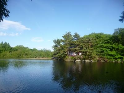 石神井公園20150504