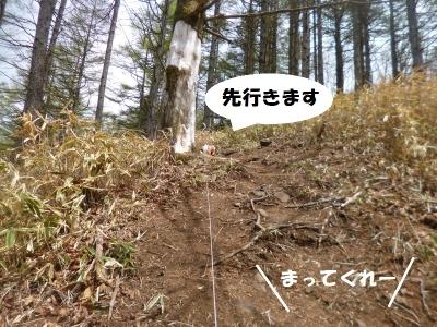 大菩薩嶺20150508