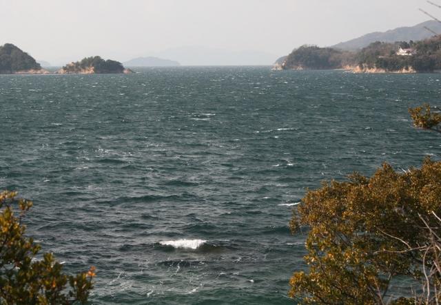 IMG_5108 強風で白波(640x443)