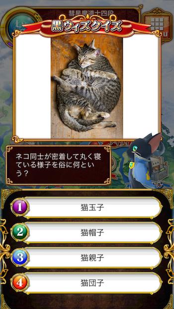 ネコ同士が密着して丸く寝ている様子を俗に何という?