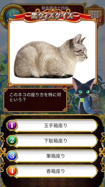 このネコの座り方を特に何という?