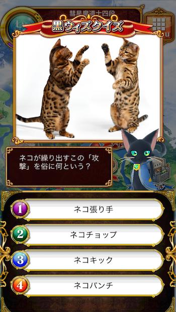 ネコが繰り出すこの「攻撃」を俗に何という?