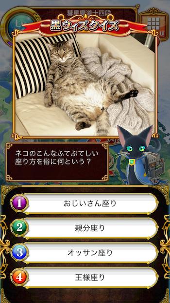 ネコのこんなふてぶてしい座り方を俗に何という?