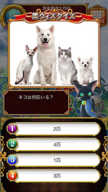 ネコは何匹いる?