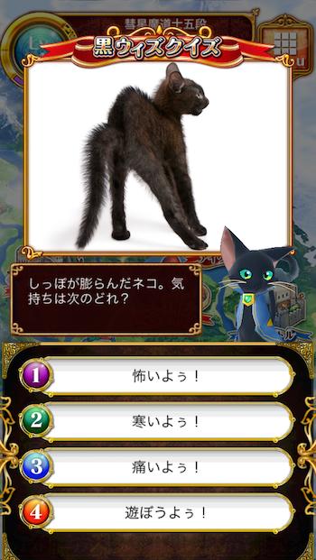 しっぽが膨らんだネコ。気持ちは次のどれ?