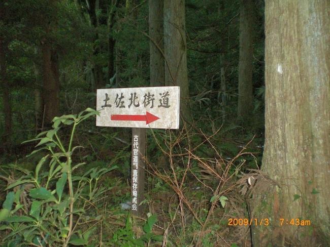 笹ヶ峰(新宮) 002_01