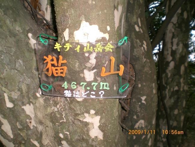 香川県城山・猫山 018