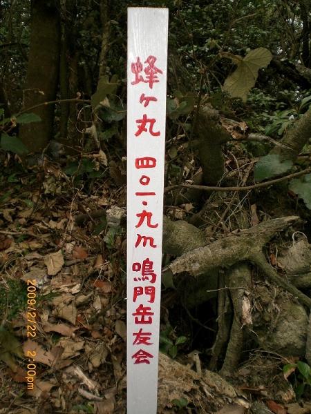 双子谷山・蜂ヶ丸 013_01