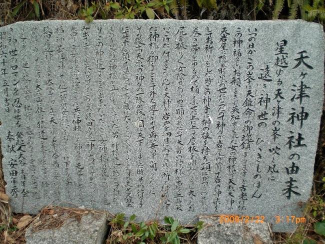 双子谷山・蜂ヶ丸 020_01