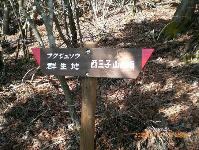 西子三山 008_01