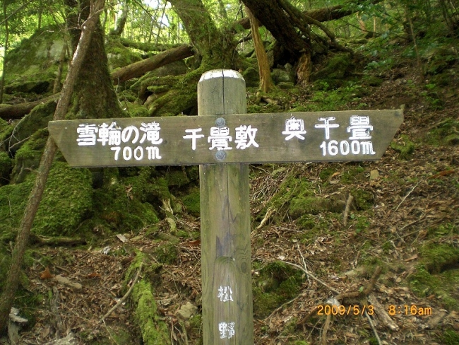 s-滑床・串が森 016_01