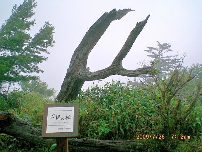 剣山 012_01