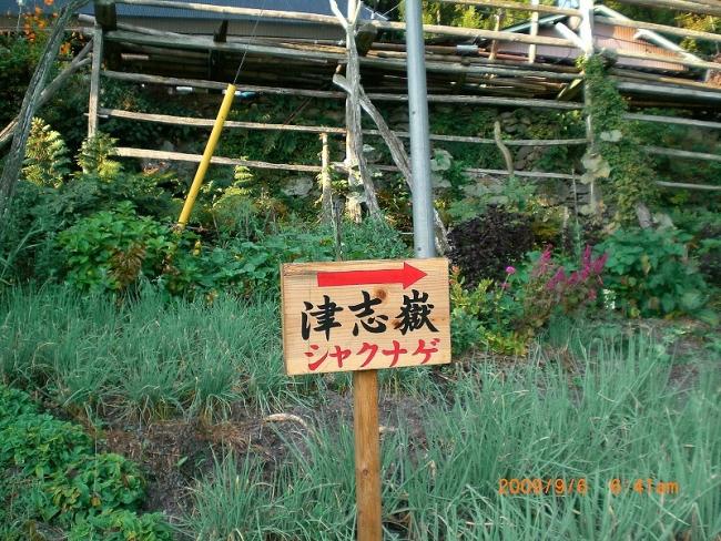 s-津志嶽ピクチャ 003_01