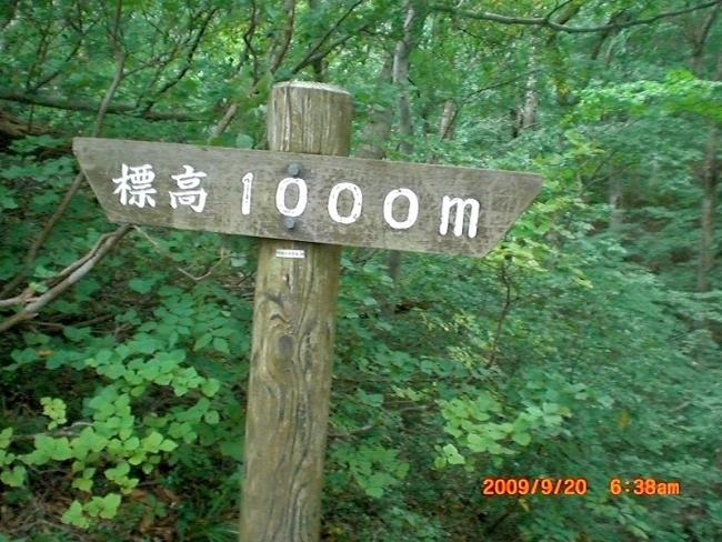 s-大山ピクチャ 009_01