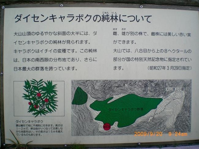 s-大山ピクチャ 037_01
