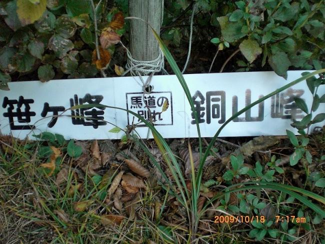 s-笹ヶ峰・チチ山ピクチャ 006_01