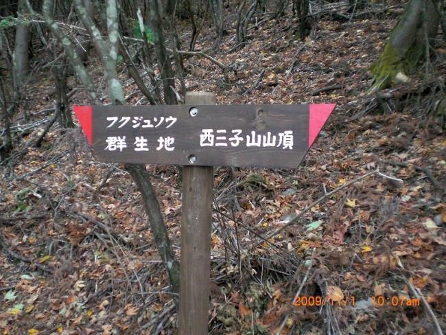 s-西三子山ピクチャ 010_01