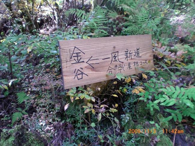 s-中津峰ピクチャ 022_01
