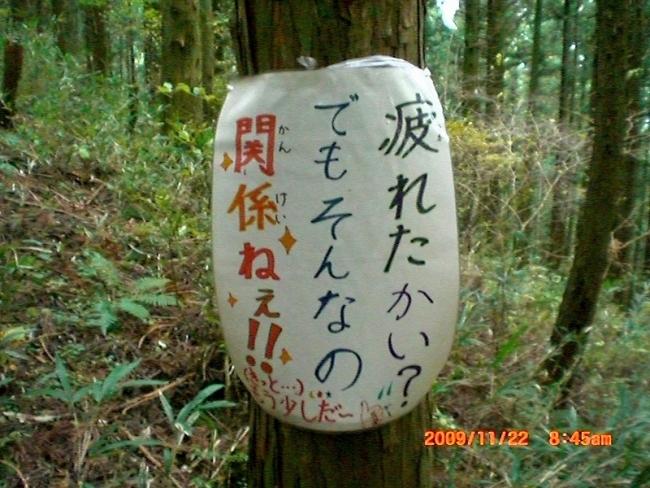 s-高縄山ピクチャ 010_01