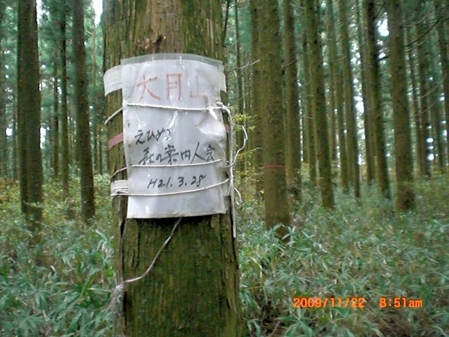 s-高縄山ピクチャ 011_01