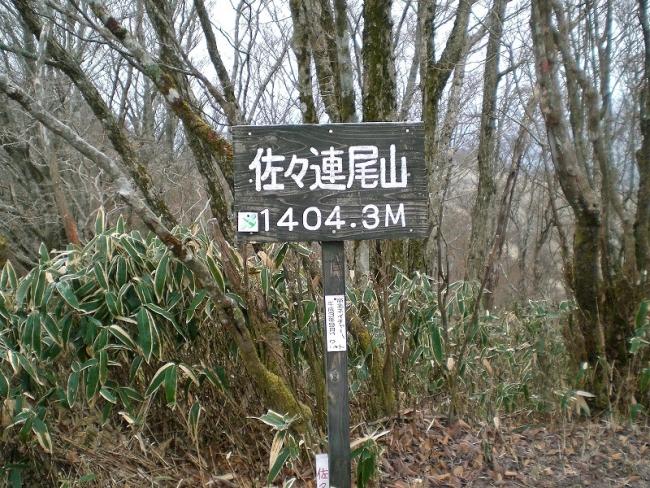 s-佐々連尾山ピクチャ 011_01