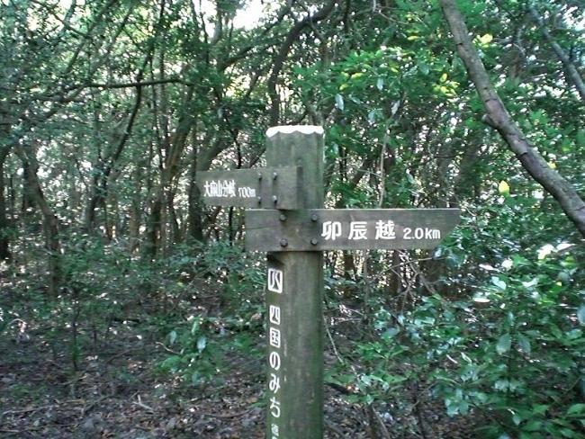 大麻山ピクチャ 007_01