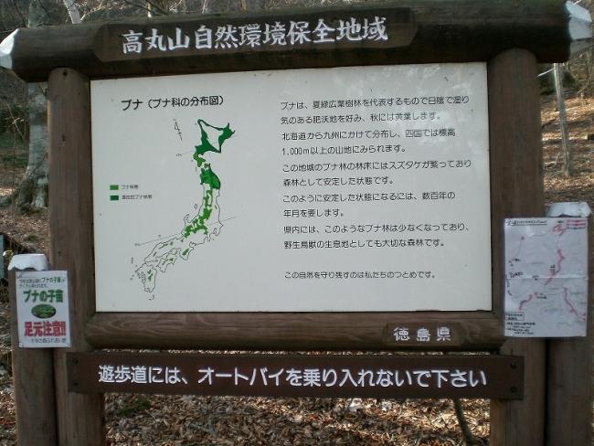 s-西三子山ピクチャ 043_01