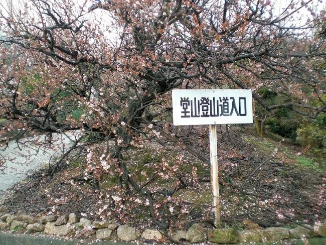 s-堂山六ッ目ピクチャ 002_01