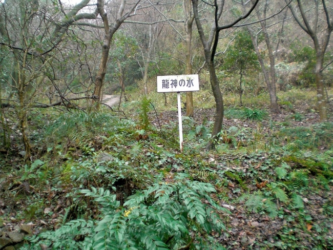 s-堂山六ッ目ピクチャ 008_01