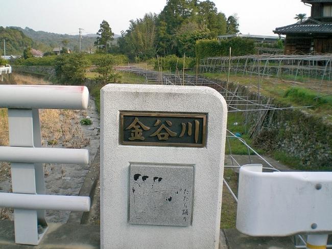 s-中津峰山ピクチャ 006_01