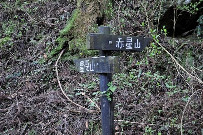 s-赤星山ピクチャ 054_01