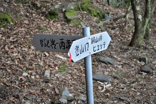 s-鋸・赤星山ピクチャ 100_01