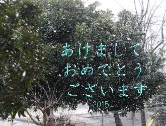 20150101.jpg